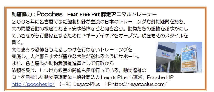 Poochesプロフィール